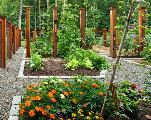 Guest blogger how to design a beautiful vegetable garden for Beautiful vegetable garden designs